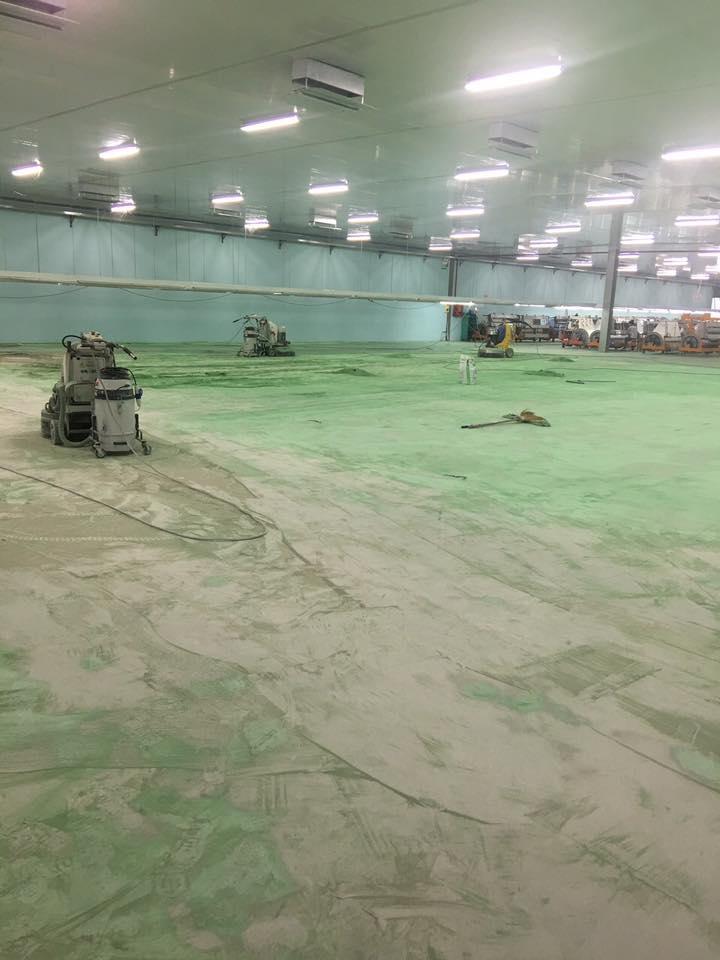 Dự án Mài bóc sơn và đánh bóng bê tông Nhà máy TOYOTA Vĩnh Phúc